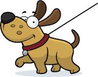 A happy looking dog walking on a lead.